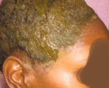 Less Messy Henna and Indigo Application