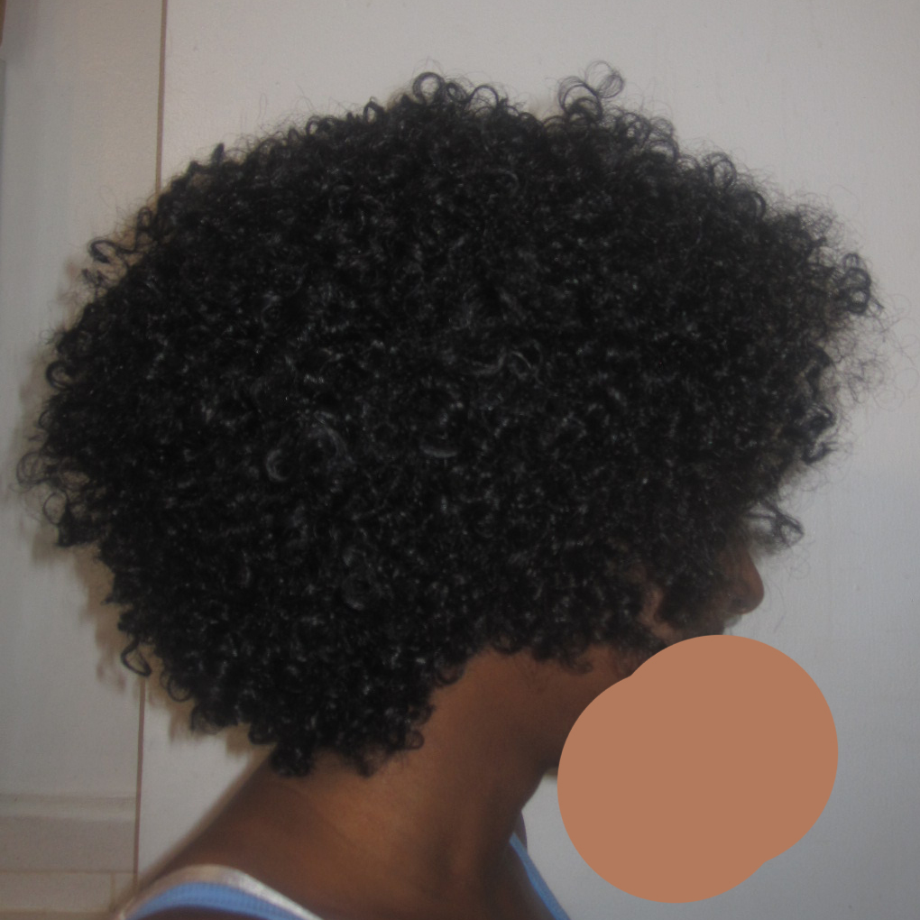 tree braid hairstyles : Protective Hairstyles Going Natural Transitioning To Natural Hair ...